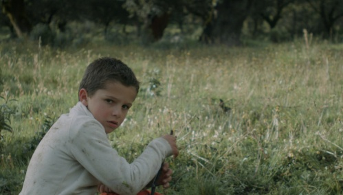 European Short Films (3)