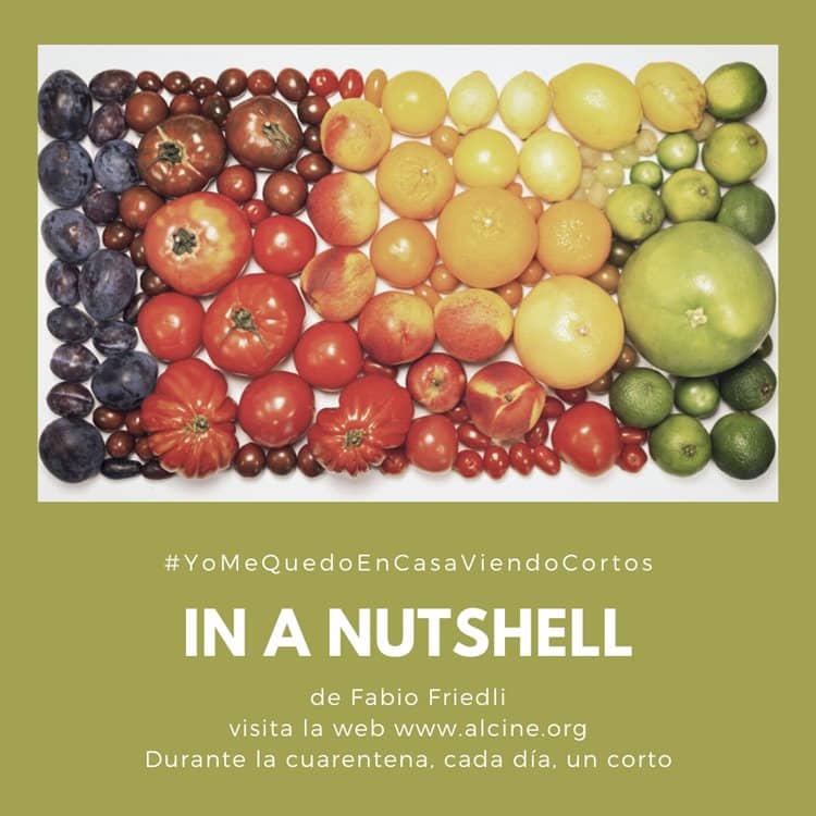 """""""In A Nutshell"""", talento, imaginación y paciencia #YoMeQuedoEnCasaViendoCortos"""