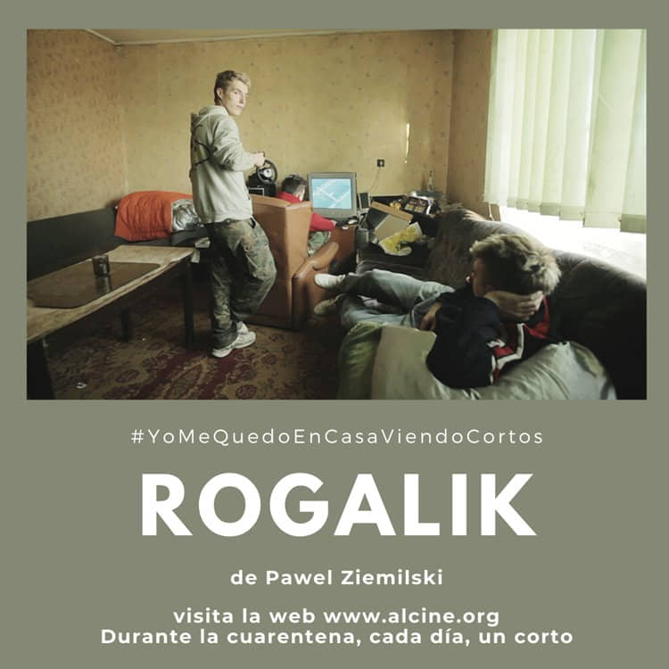 """""""Rogalik"""", una cámara que no deja de bucear entre la realidad y el sueño #YoMeQuedoEnCasaViendoCortos"""