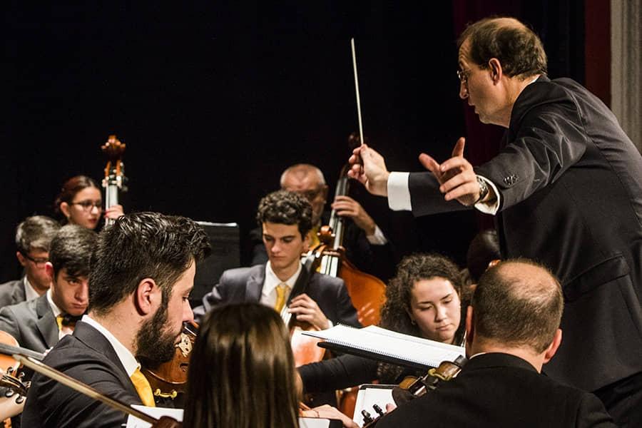 Concierto Orquesta Ciudad de Alcalá_6